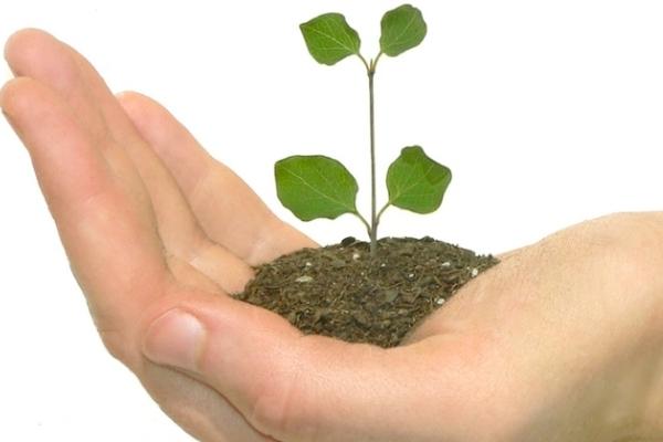 Инвестиционное кредитование: основные особенности