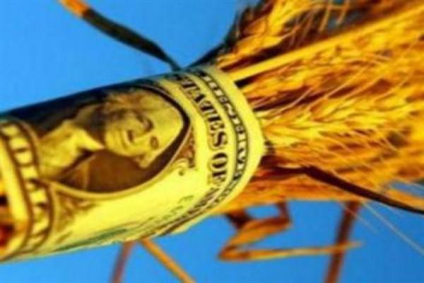 Банковские кредиты для фермеров