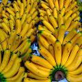 Дистрибьютор бананов Chiquita отказался от продажи фирмы бразильцам за $ 611млн