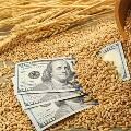 Мировые цены на пшеницу рухнули из-за России