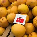 Турция начала поставки апельсинов в Россию